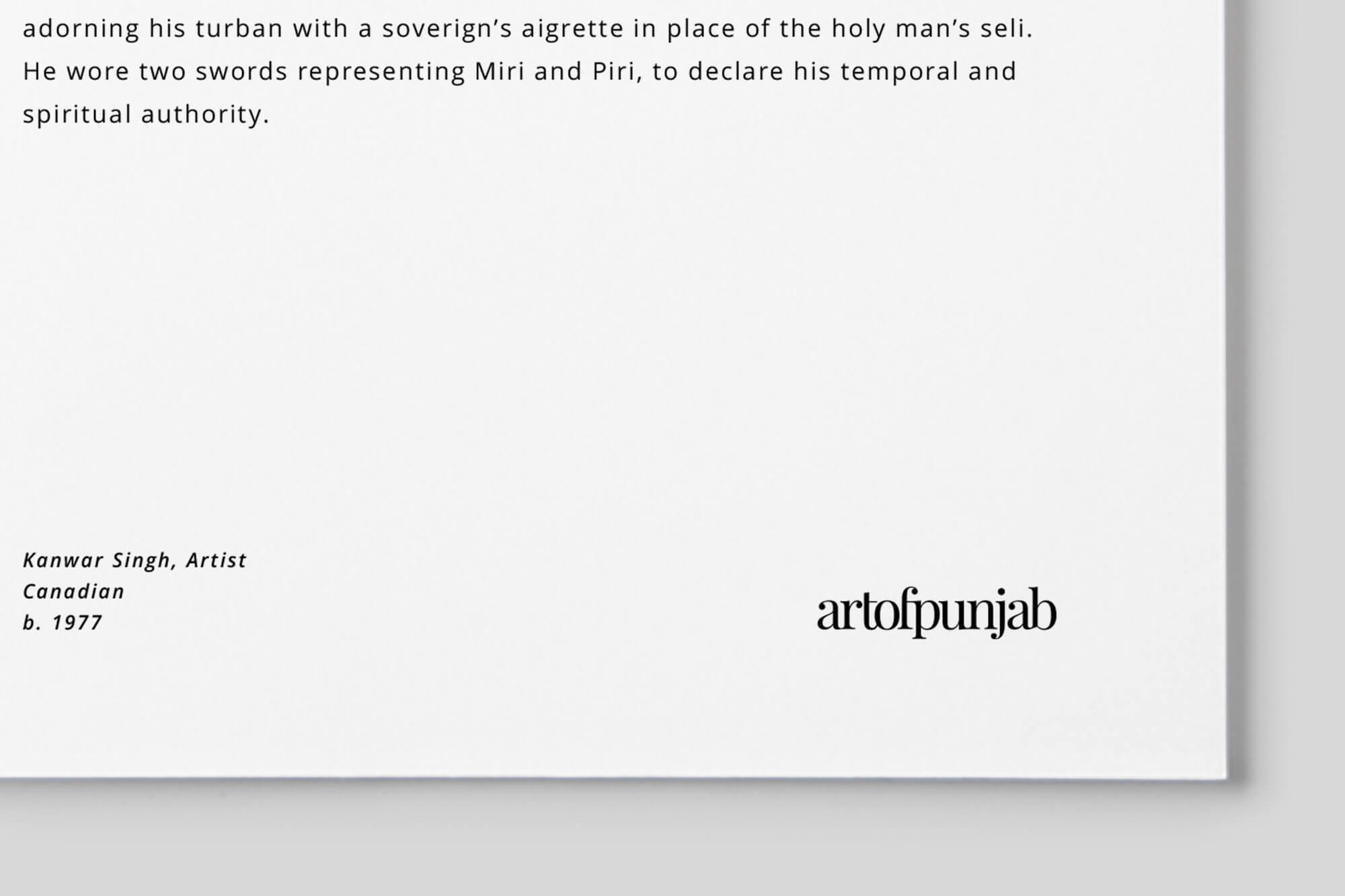 ArtofPunjab-identity-6